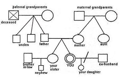 6 genogram templates